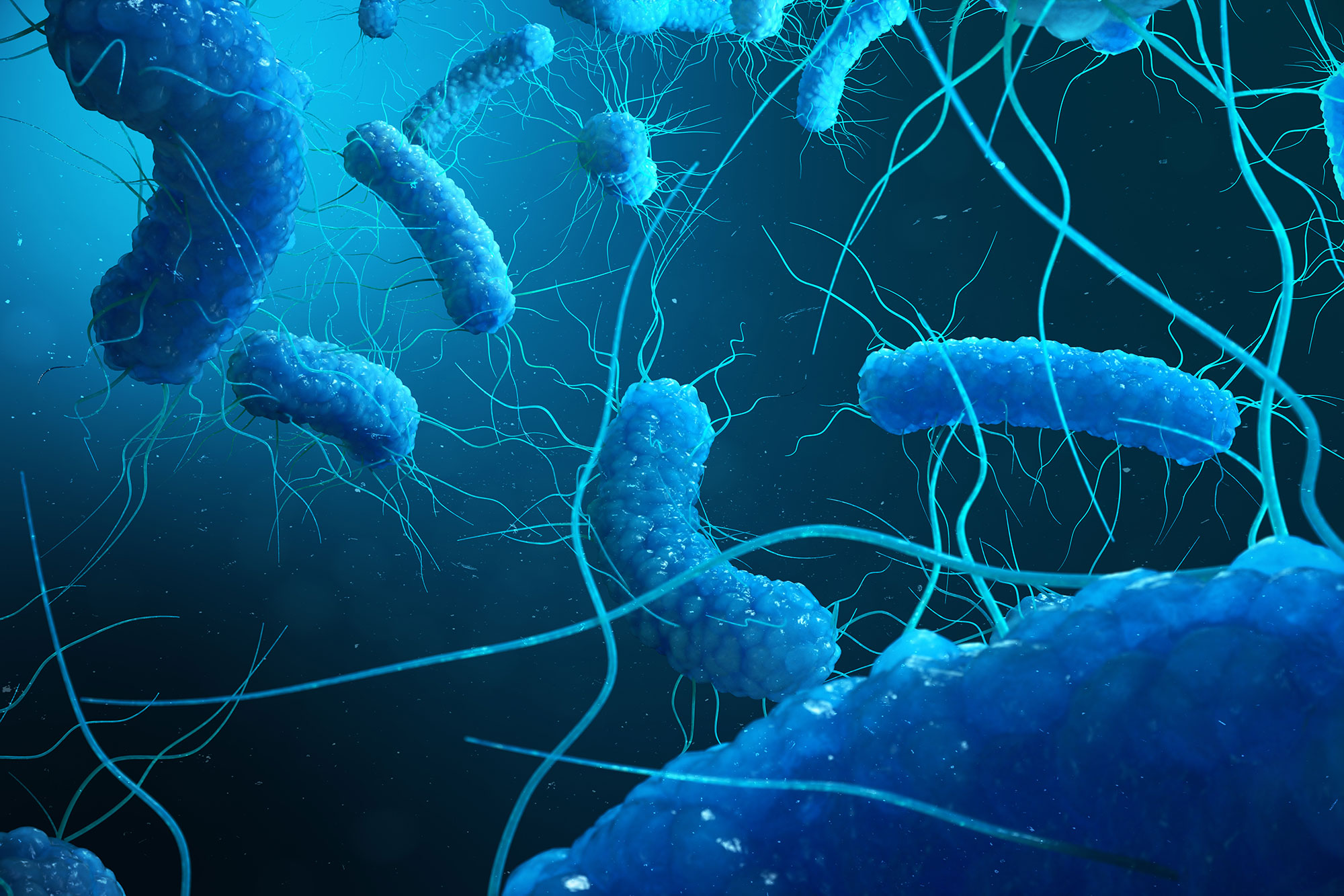 Delaying Legionella prevention adds to public health risk, says Swiftclean